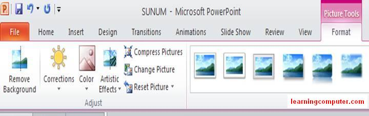 PowerPoint free 2010 Picture Format Tab12