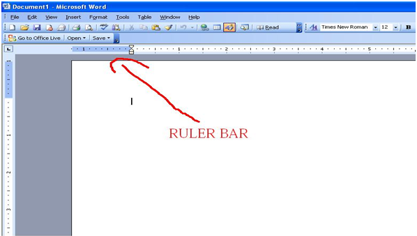 Ruler In Word