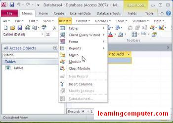 access-database-2010-insert-menu8